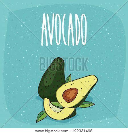 Isolated Ripe Avocado Fruits Whole And Cut