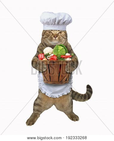 The cat cook is holding a wooden basket of vegetables. White background.
