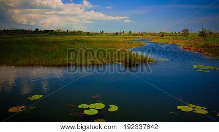 Bitumen and asphalt Pitch lake Trinidad island Trinidad and Tobago