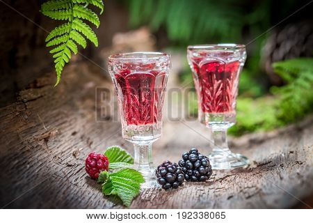 Closeup Of Liqueur With Blueberries And Alcohol In Summer