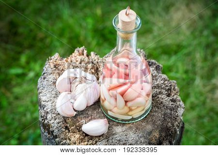 Natural Liqueur With Alcohol And Garlic In Summer