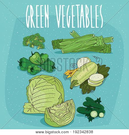 Set Of Isolated Clipart Green Organic Products