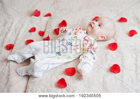Cute baby girl lies in flower petals bed