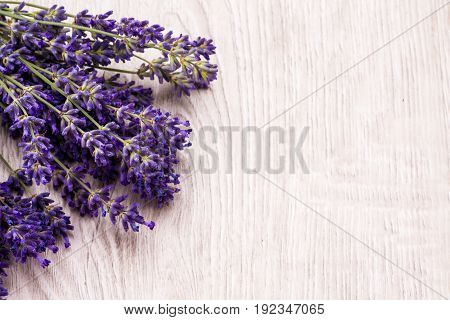Bunch of lavander on grey wooden table.