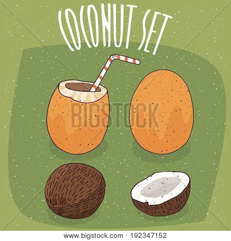 Set Of Different Isolated Coconuts With Straw