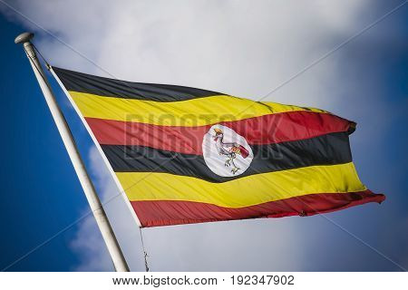 Uganda flag in flying on in sunshine in Africa