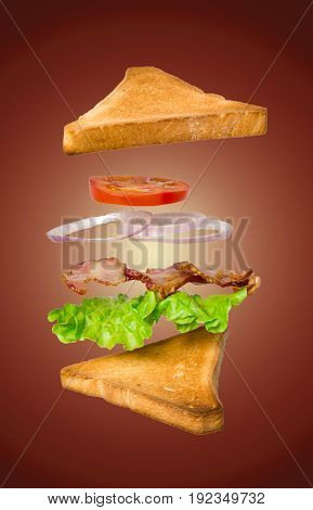 Fresh vegetarian sandwich with flying ingredients isolated on dark background. concept. vertical