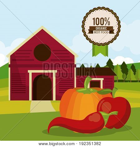 colorful poster of organic best food with farm landscape with chilli and pumpkin and apple vector illustration