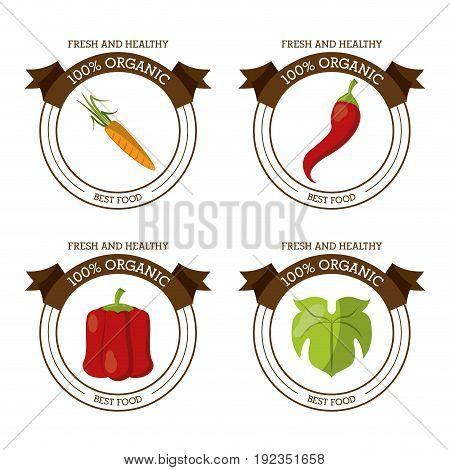 colorful logos set of fresh and healthy organic food with chilli carrot lettuce and peppers vector illustration
