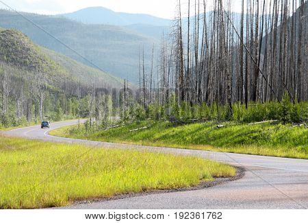 Scenic winding road in Glacier national park