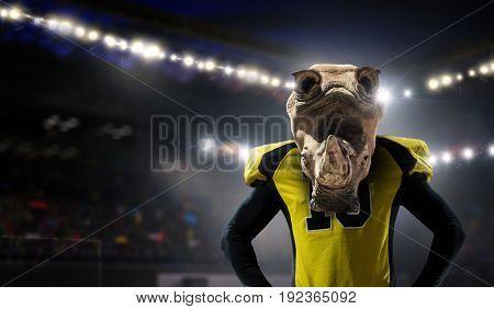 Furious rhinos team
