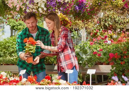 Professional man and woman gardeners smiling and watching flowers standing in garden together.
