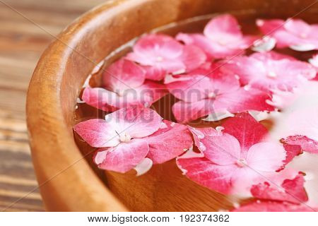 Bowl with water and hortensia flowers,close up