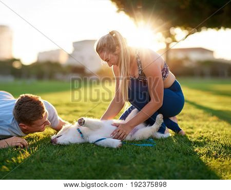 Couple lying down on grass playing with their cute puppy, clear sunny summer day sunset