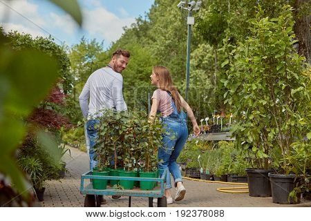 Male and female coworking professional gardeners carrying wagon with potted flowers in the garden together.