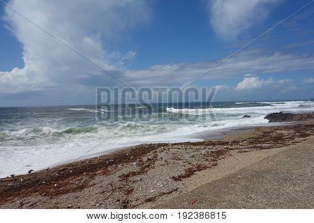 Porto coast with ocean waves crash on cliffs