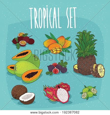 Set Of Isolated Organic Tropical Fruit Cliparts