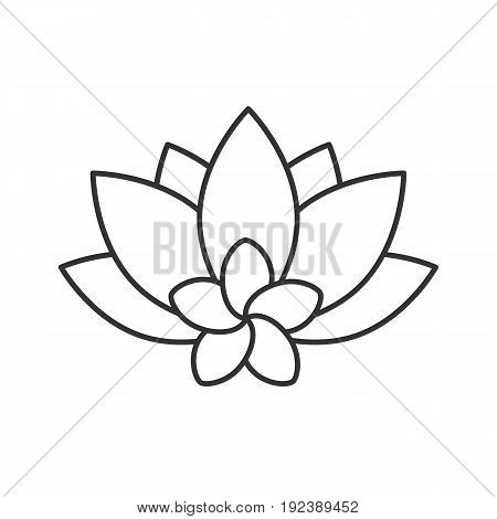 Spa salon flowers linear icon. Thin line illustration. Aromatherapy lotus and plumeria contour symbol. Vector isolated outline drawing