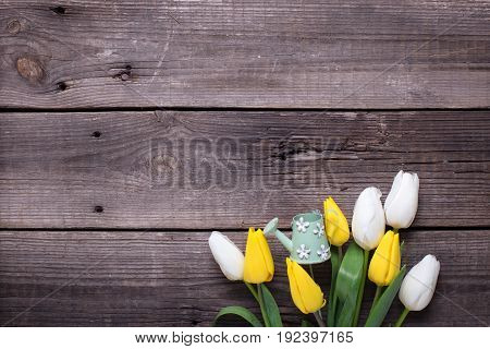 Spring yellow and white tulips flowers and decorative watering can on vintage wooden background. Selective focus. Place for text.