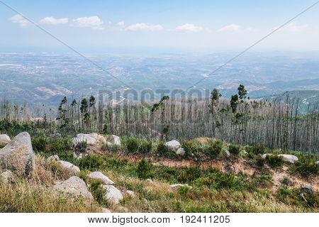 View Of Serra De Monchique (monchique Mountains)