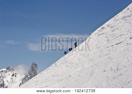 A group of alpinists climbs Mont Blanc in France