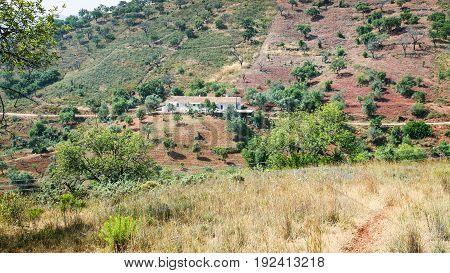 Farm In Serra Do Caldeirao Mountains In Portugal