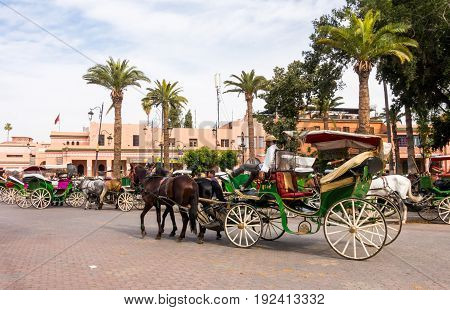 Marrakech Morocco - May 04 2017: A coachman is relaxing on his horse-drawn carriage on the Jemaa el-Fnaa square in Marrakech while waiting for tourists to take a ride.