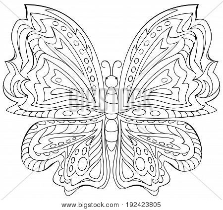 Black and white illustration of butterfly for coloring. Developing children skills for drawing. Vector image.