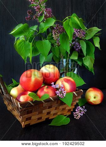 Nectarines in a wicker basket and branches of lilac