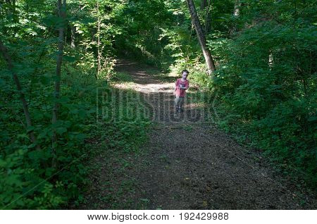 A Boy walking on pathway in green open space with mature trees on a sunny day with light clouds at Stroud Preserve