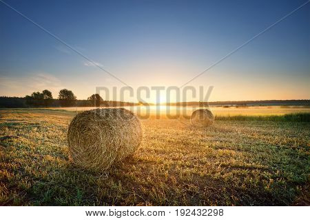 Round pressed bundles of hay on the field. The concept of harvesting and the birth of a new day. Dawn.