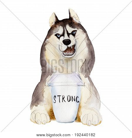 The husky dog with cup of coffee watercolor illustration in hand-drawn style.