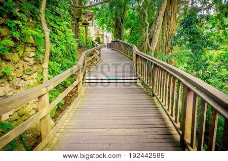 Dragon bridge at Ubud Sacred Monkey Forest Sanctuary, a nature reserve and Hindu temple complex in Ubud, Bali, Indonesia.