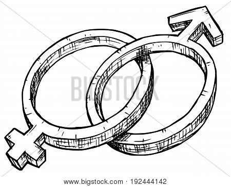 Hand drawing male and female symbols vector illustration.