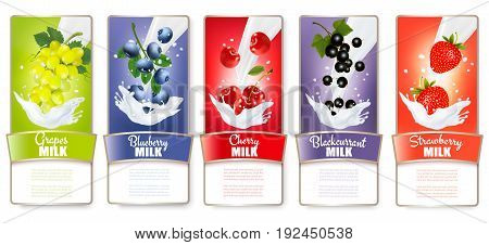 Set of three labels of of fruit in milk splashes. Vector.