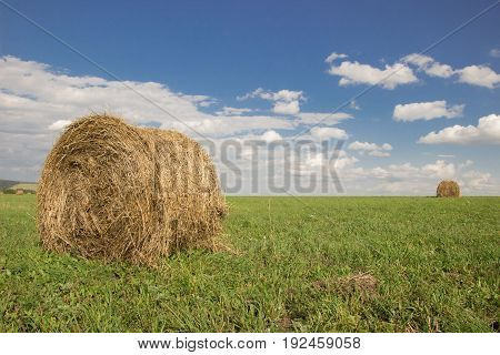 Bales of hay gold on green grass and blue sky with clouds