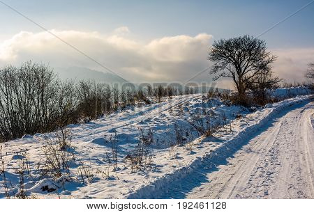 tree by the countryside road in mountains. beautiful winter sunrise landscape