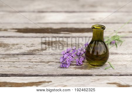 Fresh lavender and aroma oil essence in a bottle