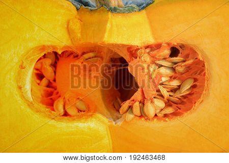 Close up of the cut fresh pumpkin