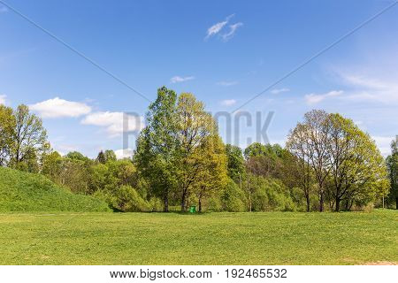 Spring landscape with green grass and trees