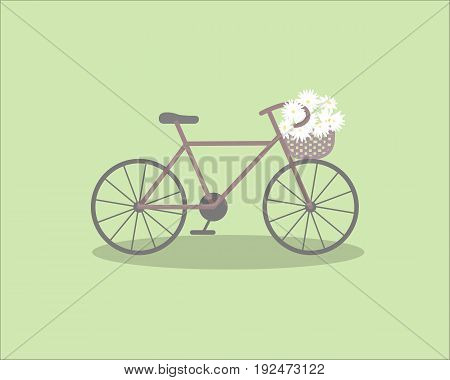 Pretty scenery in a rustic style. A purple bike and a basket of the daisies. Light green background. A vector illustration
