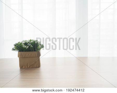 wood office table with free copy space for text and beautiful white flower on pot on white drape texture background on sunny day. view from front office table.