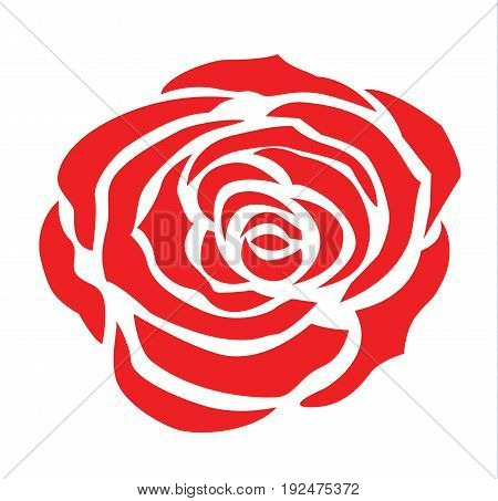 red rose icon draw vector for decoration