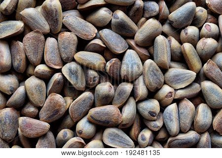Brown Korean cedar nuts texture to background