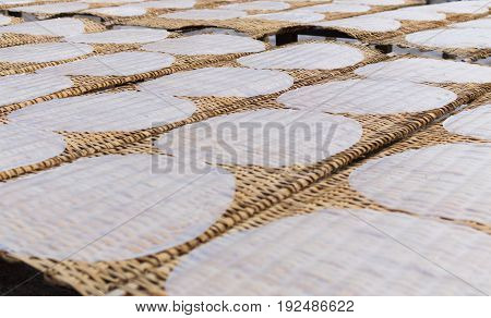 Rice pancakes drying on the sun in the rice noodles factory Can Tho Mekong Delta South Vietnam
