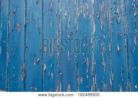 Close Up Of Peeling Paint On Blue Wooden Door