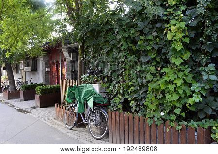 Hutong Beijing old residential area. The local street old house with the red door trees and bikes leaning on the red wooden fence
