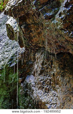 Rainwater dripping on the rocks of Rio de Janeiro rainforest