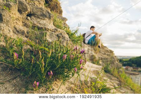 blooming flowers in the mountains with young blured man on background