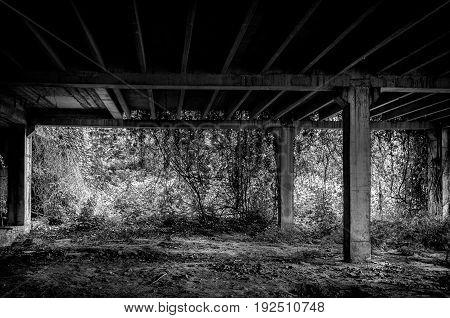 Abandoned building interior. Abandoned place. Black and white. Dark image.